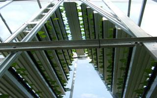 A-go-gro, vertical farming technology