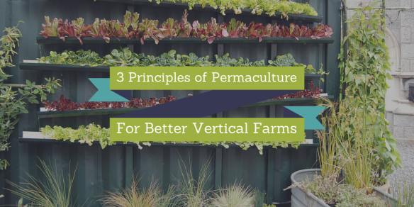 3 Principles of Permaculture