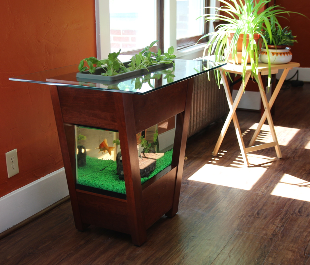 Countertop Aquaponics System : Living Furniture: How the aquaponic table came to be The Urban ...