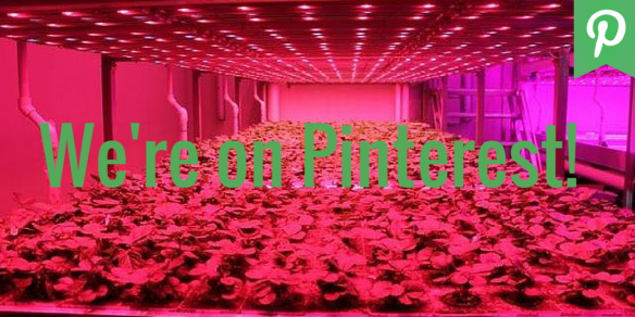 Vertical Farming on Pinterest!