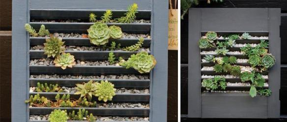 Succulent Wall Debra Prinzing