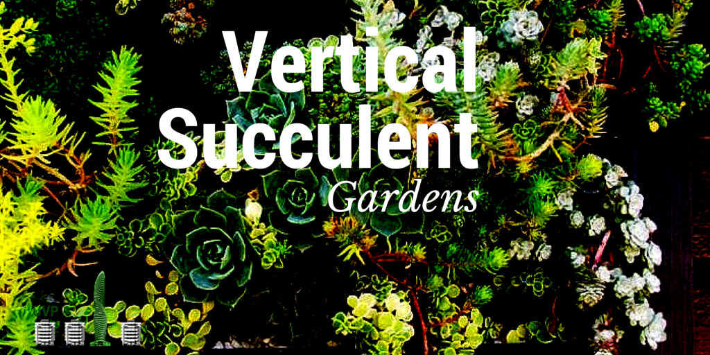 Vertical. Succulents ...