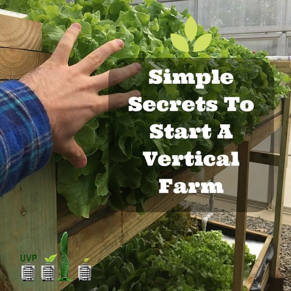 Simple Secrets To Start A Vertical Farm