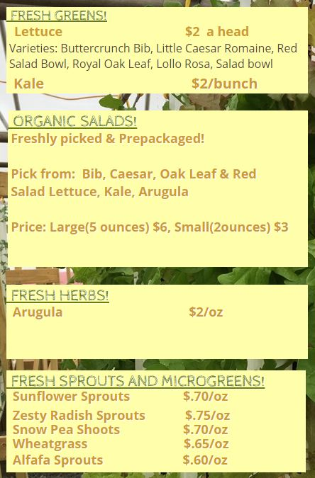 Stag's Leap Web Pricing For Hydroponic Produce