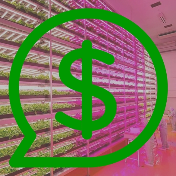 Making Money From A Vertical Farm