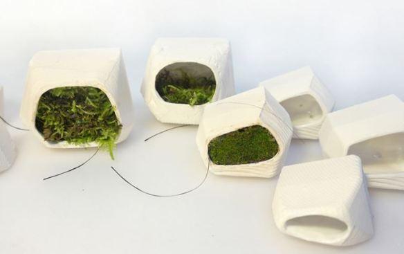 moss modules