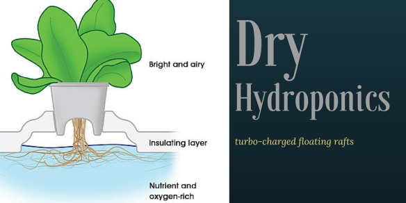 dry hydroponics floating raft systems