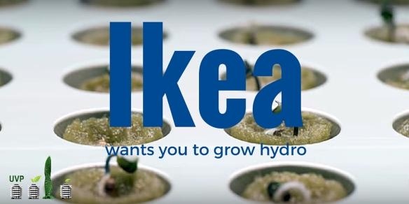 Ikea hydroponics?