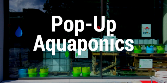 pop up aquaponics in a mall stadfarm