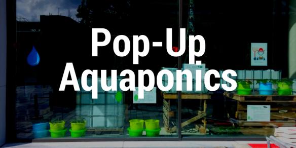 pop up aquaponics in a mall stadfarm
