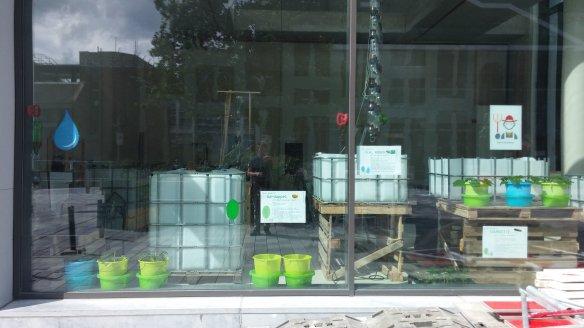 aquaponics hydroponics in a mall