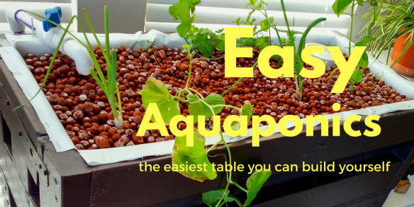 Easy home aquaponics