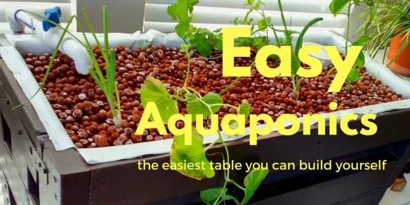 Easy home aquaponics