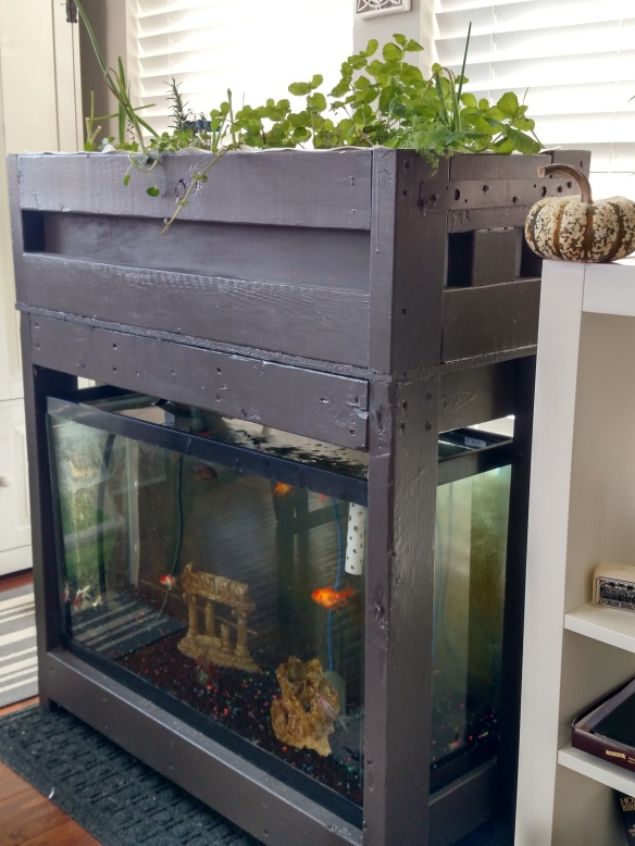 aquaponics table