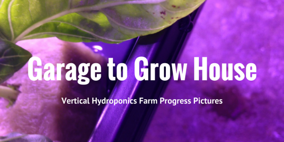 hydroponic vertical farm pictures