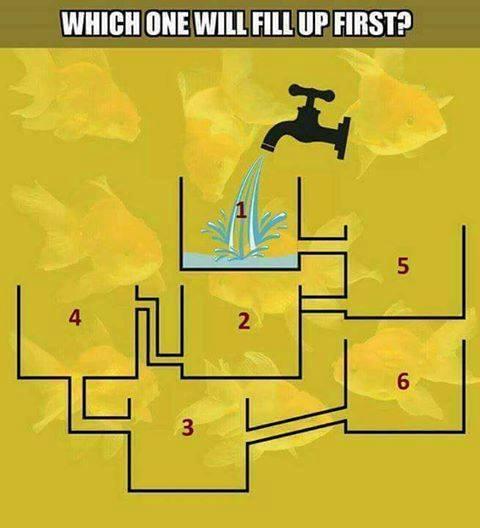 hydroponics puzzle