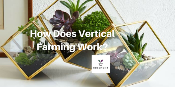 How Does Vertical Farming Work-